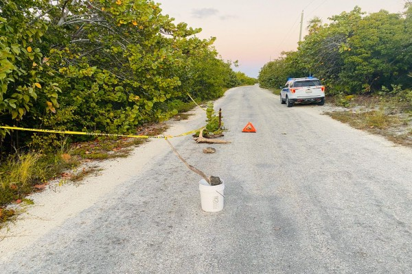 Sinkhole Discovered in Little Cayman, 31 January