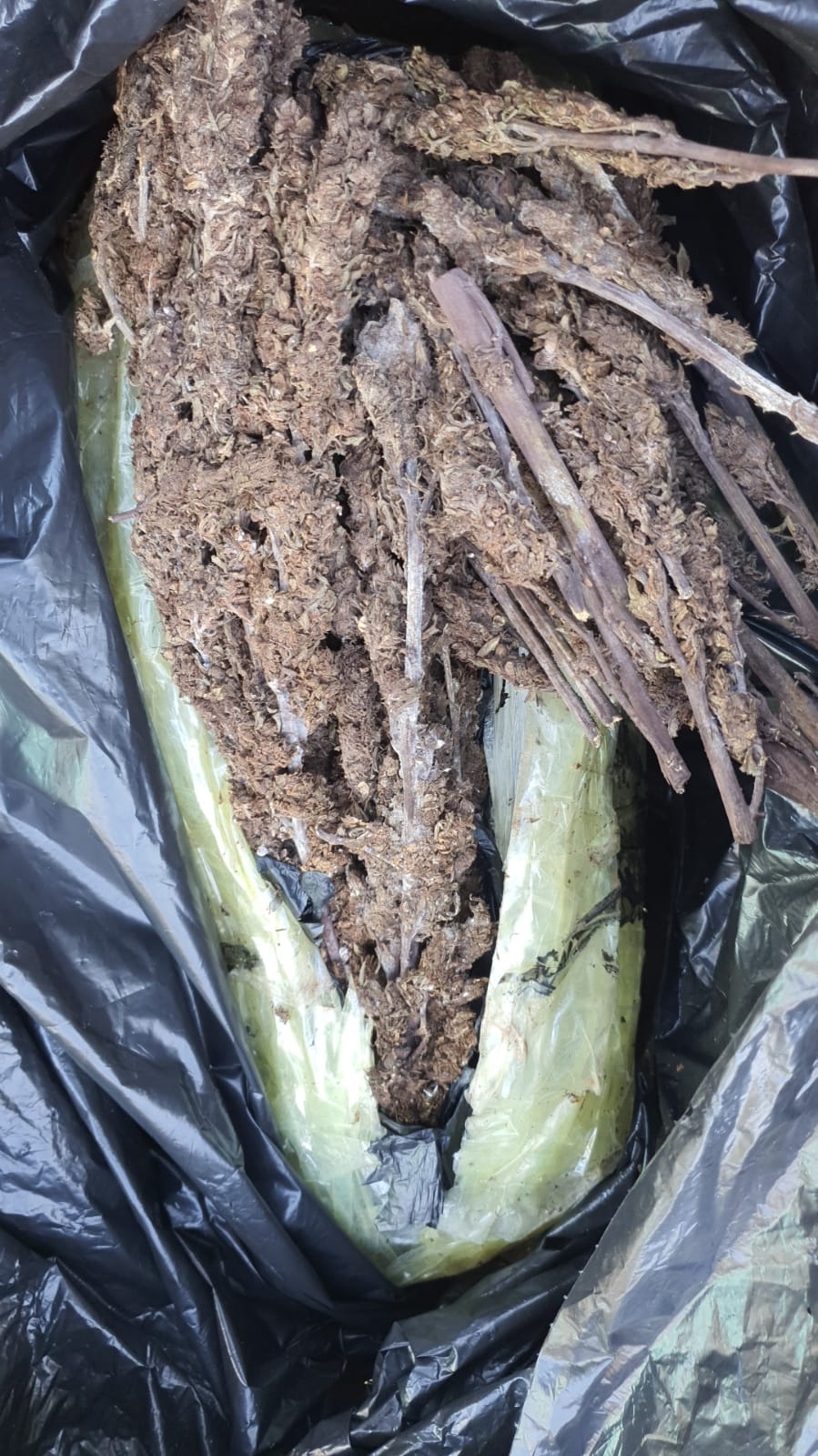 Bags of suspected ganja were recovered during the search.